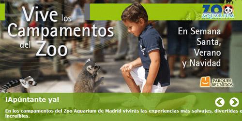 Campamentos Semana Santa Zoo de Madrid