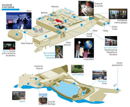 plano-aquarium