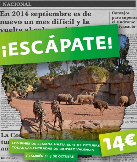 Bioparc Valencia-1