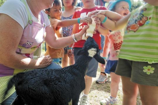 Turismo rural con niños 5