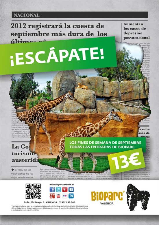 Oferta Bioparc Valencia Septiembre