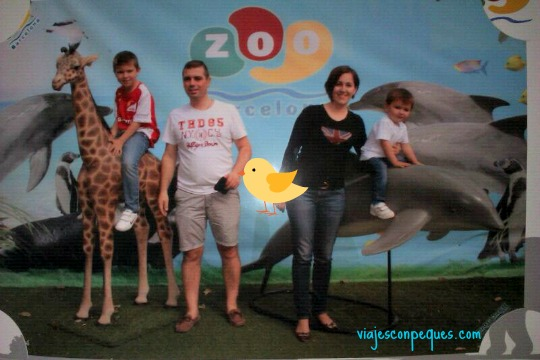 Zoo Barcelona-14