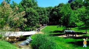 Parc Vallparadis 4