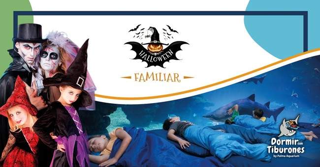 Halloween Palma Aquarium 2019